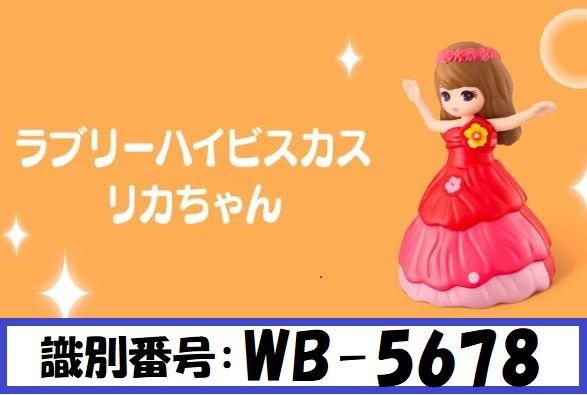WB-5678