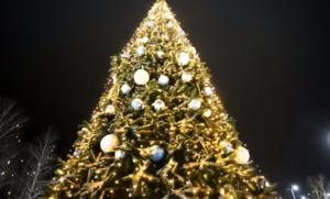 【安くお得に!】クリスマスを順番する『2つの方法』