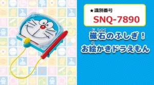 識別番号:SNQ-7890