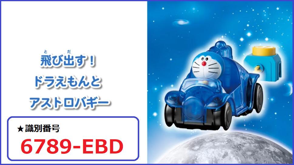 識別番号:6789-EBD